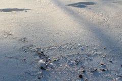 Een strand in Long Island, de Bahamas royalty-vrije stock fotografie