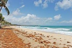 Een strand met dekking van coco ter plaatse. Royalty-vrije Stock Foto
