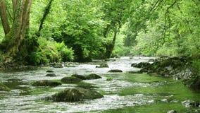 Een stromende rivier in Dartmoor, Devon stock video