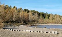 Een strook van hout op de kust Stock Afbeelding