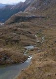 Een stroom die aan Harris Lake bij de Grote Gang van Routeburn in Nieuw Zeeland komen royalty-vrije stock foto's
