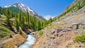 Een stroom van de Berg en een oude brugstichting in Animas Vorken, een Spookstad in San Juan Mountains van Colorado Stock Foto's