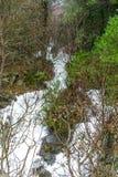 Een stroom in vloed onderaan de berg stock fotografie