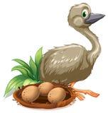 Een struisvogel naast het nest met eieren royalty-vrije illustratie