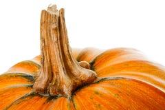 Een stuk oranje pompoenen op een witte achtergrond Selectieve focu Stock Afbeeldingen