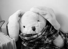 Een stuk speelgoed van de konijnpluche met een sjaal zit naast bevindende boeken royalty-vrije stock afbeelding