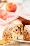 Een stuk van appeltaart Stock Fotografie