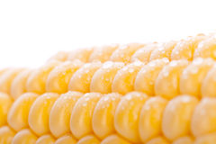 Een stuk van geel graan stock fotografie