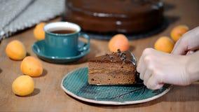 Een stuk van Sacher-cake Het aanbrengen van een plaatstuk van chocoladecake stock video