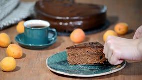 Een stuk van Sacher-cake Het aanbrengen van een plaatstuk van chocoladecake stock videobeelden