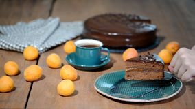 Een stuk van Sacher-cake Het aanbrengen van een plaatstuk van chocoladecake stock footage