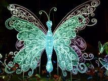 Een super grote lichte vlinder stock afbeelding
