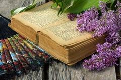 Een tak een oud boek Stock Fotografie