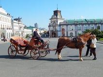 Een taxichauffeur en toeristen die het paard petting In het vierkant van Kazan in de republiek Tatarstan in Rusland Royalty-vrije Stock Afbeelding