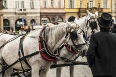 Een taxichauffeur in Praag Stock Foto