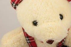 Een teddybeer op witte achtergrond wordt geïsoleerd die Royalty-vrije Stock Fotografie