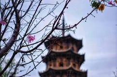 Een tempel in QuanZhou stock foto