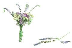 Een tenger boeket van bloemen met een purpere bloem van een muntinstallatie Stock Fotografie