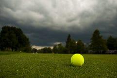 Een tennisbal op het gazon Stock Fotografie