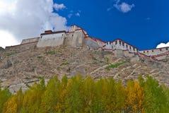 Een Tibetan Klooster royalty-vrije stock afbeelding