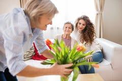 Een tiener, een moeder en een grootmoeder thuis stock afbeeldingen