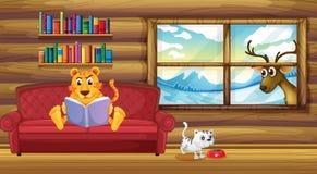 Een tijger die een boek binnen het huis lezen Stock Afbeeldingen