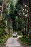 Een toeristenauto in het nationale park van Lolegaon Royalty-vrije Stock Foto