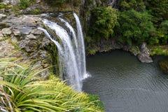 Een toneelmening van Whangarei-waterval Stock Foto