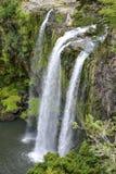 Een toneelmening van Whangarei-waterval Stock Afbeeldingen