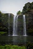 Een toneelmening van Whangarei-waterval in bewolkt weer Royalty-vrije Stock Afbeeldingen