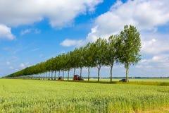 Een tractor die volgens een rechte lijn met bomen drijven Stock Foto