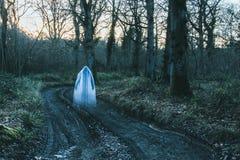 Een transparant vaag spookachtig cijfer die met een kap zich op een weg in een bos in de winter bevinden Met gedempt korrelig gee stock afbeelding