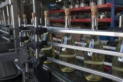 Een transportband voor de productie van mousserende wijn Royalty-vrije Stock Foto's