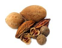 Een triphala-combinatie ayurvedic vruchten royalty-vrije stock afbeeldingen