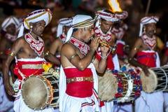 Een Trompetventilator presteert voor een groep Davul-Spelers tijdens Esala Perahera in Kandy in Sri Lanka royalty-vrije stock fotografie