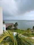 Een Tropisch Gordijn van Regen stock foto's