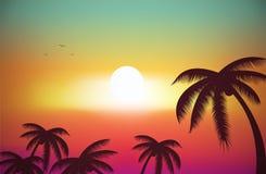 Een Tropische Eilandzonsondergang Stock Foto's