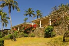 Een tropische tuin op bequia stock afbeelding