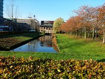 Een tuin bij een Zonnige de herfstdag in Amstelveen Holland stock foto