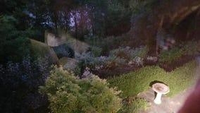 Een tuin bij nacht stock foto's
