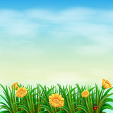 Een tuin onder de hemel Stock Afbeelding
