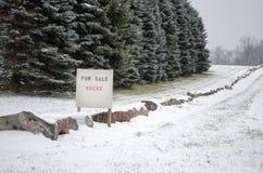 De rotsen van de winter voor verkoop Royalty-vrije Stock Foto's