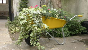 Een tuinkarretje met bloemen stock footage