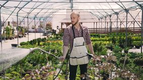 Een tuinman kleedde zich in het schortwerk in een grote serre, water gevend installaties op een zonnige dag stock footage