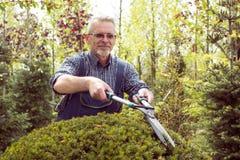 Een tuinman in overall snijdt struiken royalty-vrije stock afbeelding