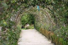 Een tunnel van bloemen Royalty-vrije Stock Afbeelding
