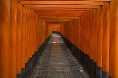 Een tunnel van toriipoorten, Japan Royalty-vrije Stock Foto