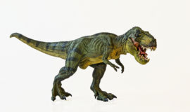 Een tyrannosaurus jaagt op een Witte Achtergrond stock foto's