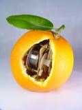 Een uurwerksinaasappel royalty-vrije stock foto