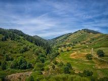 Een vallei in Franse Cevennes Stock Afbeelding